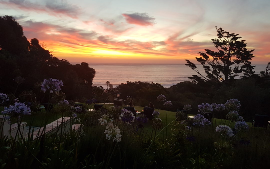 Beauty, BBQ and a bevy of delights at Camps Bay Retreat