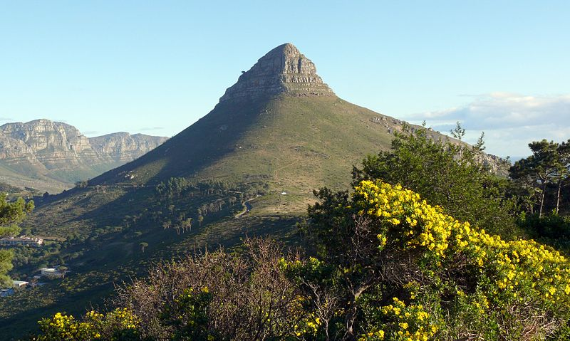 New Year, New Trails: The Best Nature Trails in Cape Town