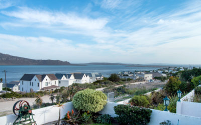 Winter Specials at our Gorgeous Hotels