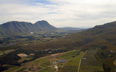 Springtime in the Overberg: How to Make the Most of This Season